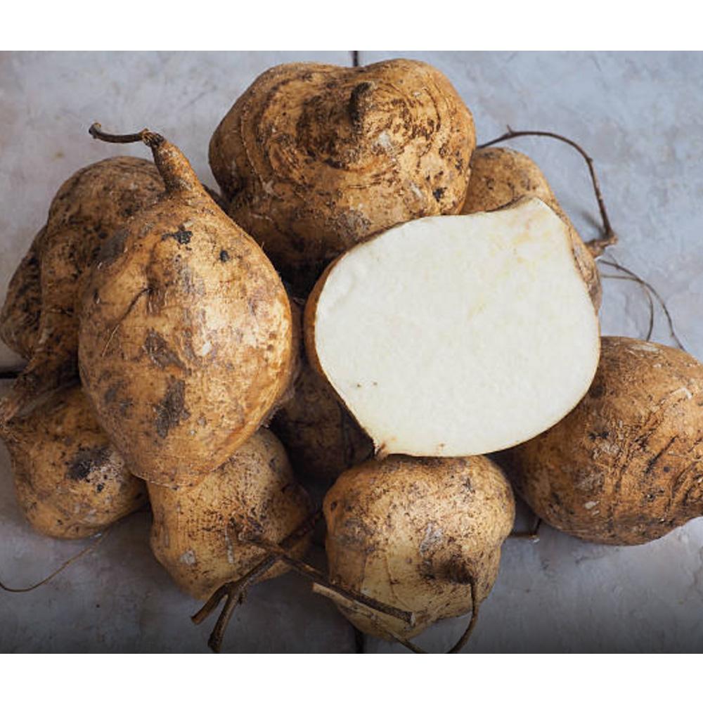 鮮採家 屏東清甜爽脆豆仔薯10台斤1箱