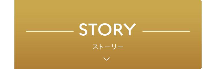 ストーリー 開く