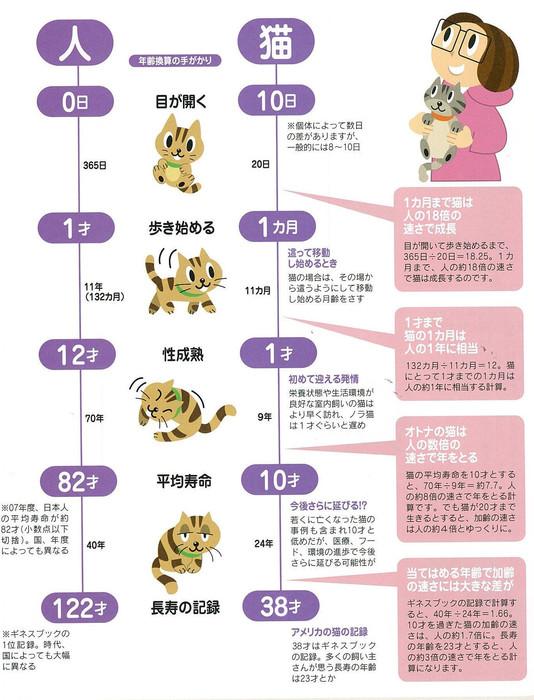 人間 猫 年齢