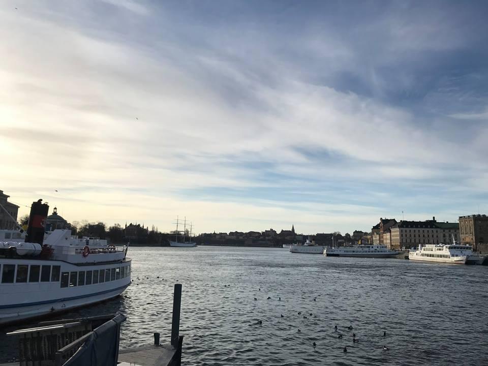 c294acee3044 なぜスウェーデンにはサステイナブル先進企業が多いのか 貧困国から世界 ...