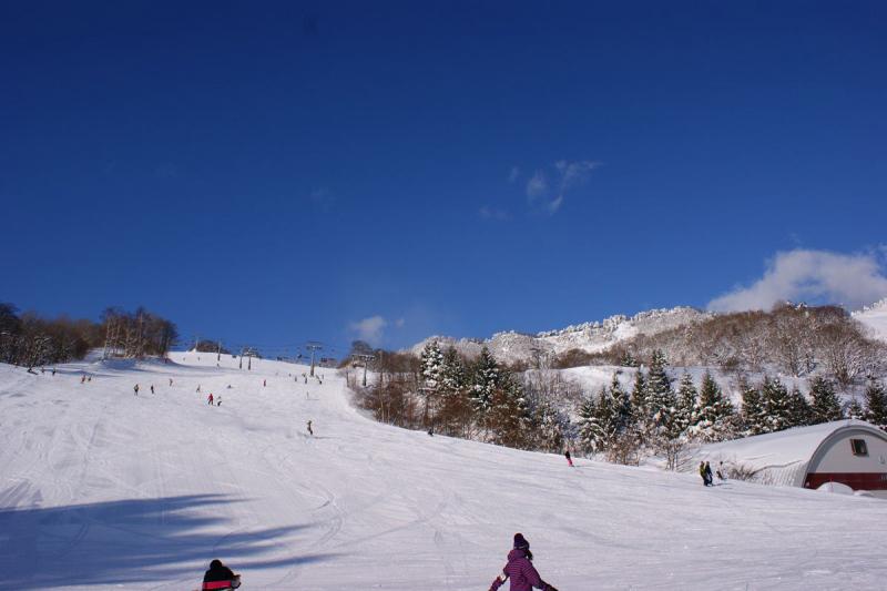 場 ハチ 北 スキー