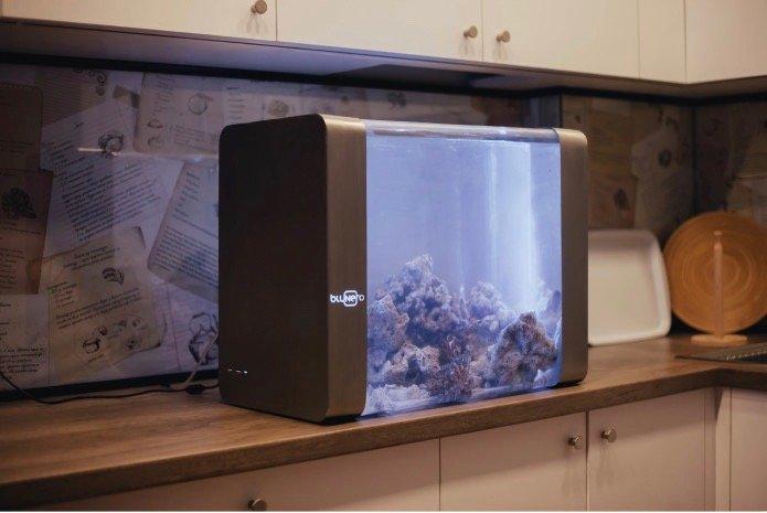 8ef5b8fab4d2 旅行に出かけるなど、家を離れる際に心配になる観賞魚。それらを外出時でも観察できて、餌やりや水温調節まで可能にしたのが、IoT水槽「Bluenero」だ。