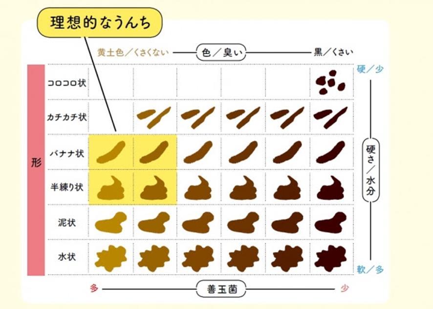 あなたの腸は美腸?それとも汚腸? 今すぐできる3つの美腸習慣 ...